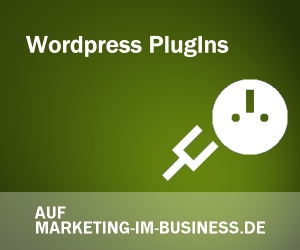 Wordpress Plugins, Blogs, Nischenseiten, Websites